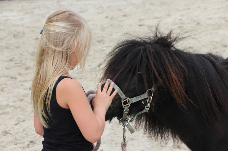 Pony Power voor Kids